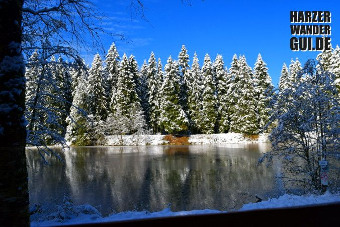 Der Stierbergsteich im winterlichen November. Stempelstelle Nr. 48 der Harzer Wandernadel. Mehr Infos auf dem HWG.  #stierbergsteich #harzerwandernadel #HWG #wandern #wandernimharz #harz #teich #harzbilder #eis #wandernadel