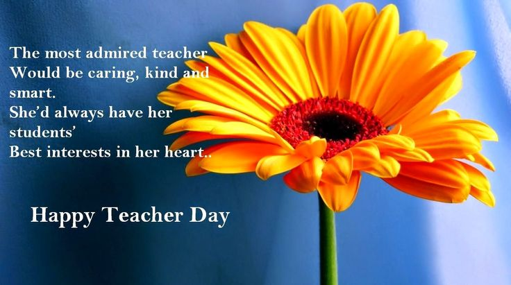 love quotes for him paragraph Happy Teachers Day Cards sms Messages Quotes poems 2014