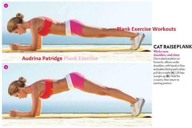 planking exercise routines | ... Plank Exercise Workout | Plank Exercises Routine | Plank Variations