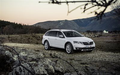 Download wallpapers Skoda Octavia Scout, 2017 cars, wagons, offroad, Skoda