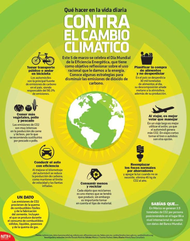 #Infografía Qué hacer en la vida diaria contra el cambio climático Este 5 de marzo se celebra el Día Mundial de la Eficiencia Energética que tiene como objetivo reflexionar sobre el uso racional que le damos a la energía.  Conoce algunas estrategias para disminuir las emisiones de dióxido de carbono.  @Candidman   #Ecologia Infografias Cambio Climático Candidman Ecología Energía Infografía @candidman