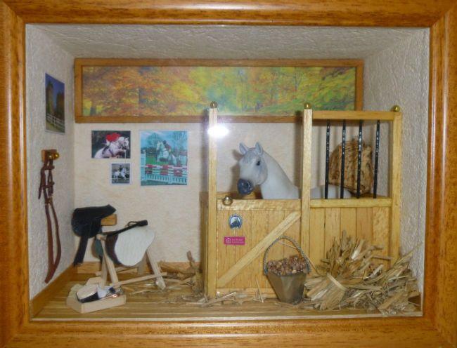 les 15 meilleures images du tableau vitrines sur pinterest vitrines en verre miniatures et objet. Black Bedroom Furniture Sets. Home Design Ideas