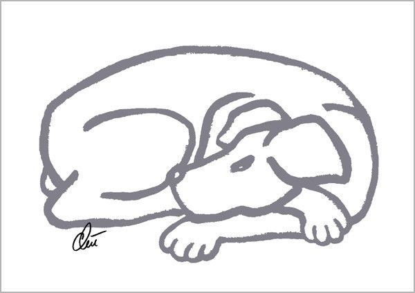 JACQUELINE DITT - Dog - Grey A3 limitiert signiert Grafik Hund Hunde Bilder art