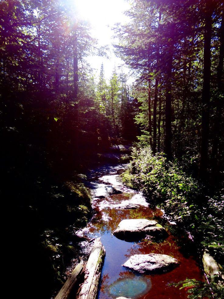 Dans le parc Jacques Cartier randonnée, VTT, canoë, pêche, ski, raquettes et chiens de traineau dans l'une des plus grandes réserves naturelle du Québec.