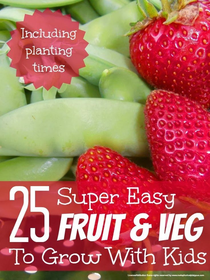 best fruit and veg to grow with kids
