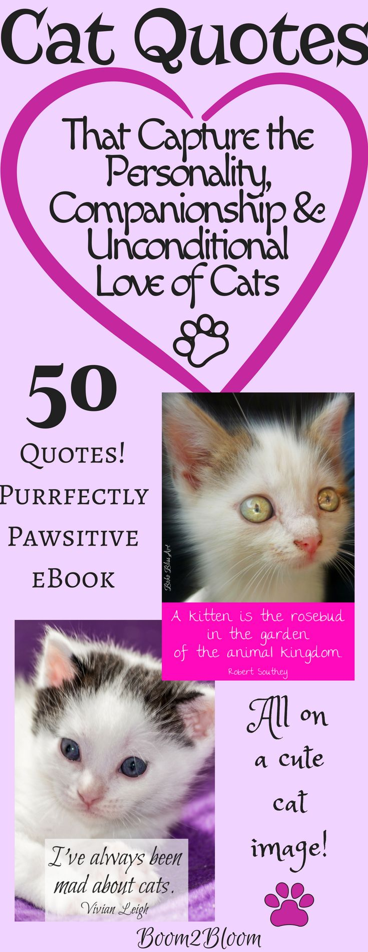 Purrfectly Pawsitive: 50 Quotes About Cats eBook by Sandra Watson. Now there are 50 quotes on gorgeous images of kittens and cats. These quotes capture the personality, companionship and unconditional love of cats! #Cats #CatQuotes #QuotesAboutCats #eBook #Kittens #Pets #CatArt #Animals #CatEBook