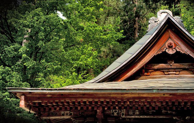 Aizu roof top by Nicola Wheeler.    Aizu, Fukushima prefecture.