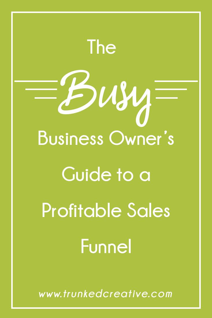 The Busy Business Owner's Guide to a Profitable Sales Funnel