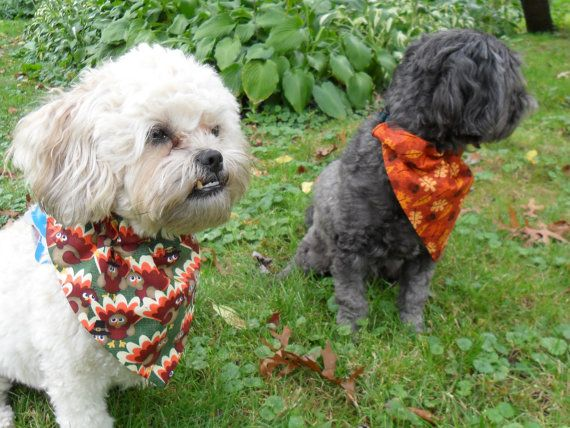 Cute bandanas, perfect for fall. Slips over the collar - no tying! Handmade in the USA :)