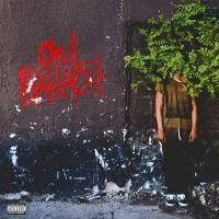 owl pharaoh | Tumblr