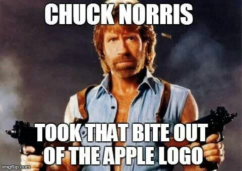 Chuck Norris doesnt shave; he kicks himself in the face. The only thing that can cut Chuck Norris is Chuck Norris. - funny memes
