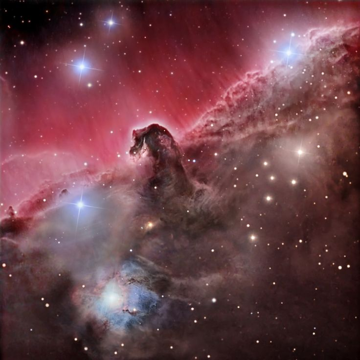 """Sculpted by stellar winds and radiation, a magnificent interstellar dust cloud by chance has assumed this recognizable shape. Fittingly named the Horsehead Nebula, it is some 1,500 light-years distant, embedded in the vast Orion cloud complex. About five light-years """"tall"""", the dark cloud is cataloged as Barnard 33 and is visible only because its obscuring dust is silhouetted against the glowing red emission nebula IC 434. Stars are forming within the dark cloud. Contrasting blue reflection…"""