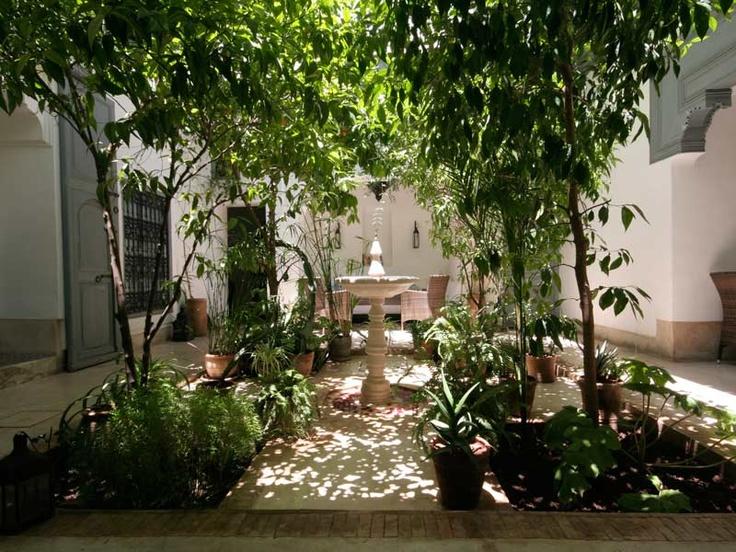 Les 21 meilleures images du tableau maison djerba for Entretien jardin tunisie