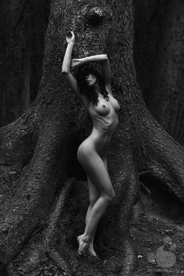 Opinion artistic nude photography art you were