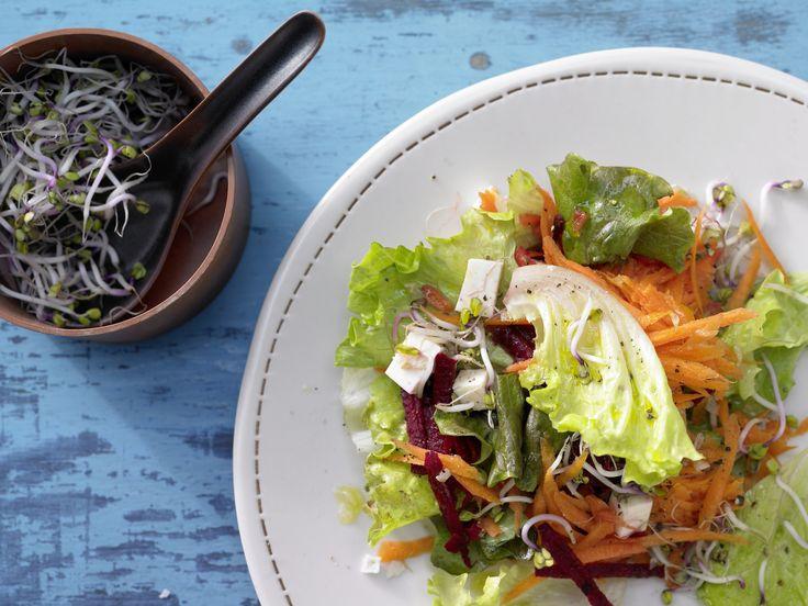 Rote-Bete-Möhren-Salat - mit Sprossen und Schafskäse - smarter - Kalorien: 242 Kcal - Zeit: 25 Min. | eatsmarter.de Salat mit Rote Bete, Möhre und Feta.