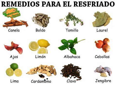 remedios con plantas medicinales para curar el resfriado