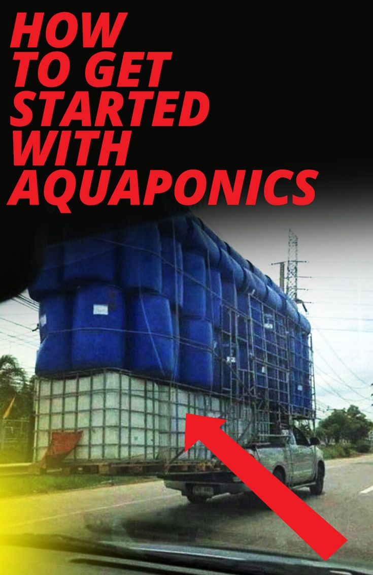 Use this short guide to start your own Aquaponics farm