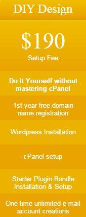 Do it yourself website setup