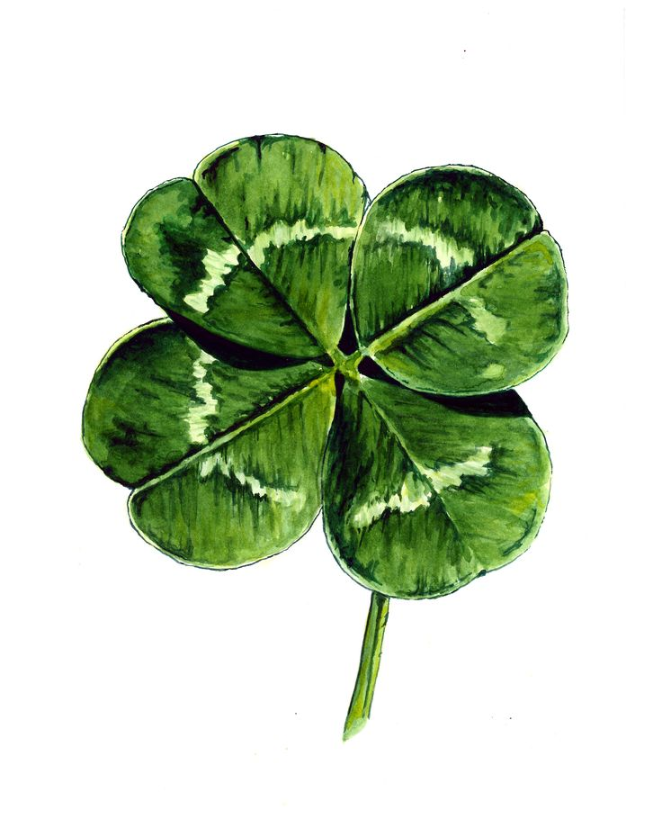 4 leaf clover by Suzanne Houghton | Artsy Techniques ...