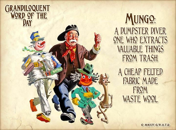 Mungo (MUNG•go) Noun: -A dumpster diver – one who extracts valuable things from trash. -A cheap felted fabric made from waste wool.
