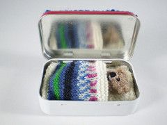 "Pocket Ted is only 8 cm / 3"" tall and sleeps in his own knitted bed in a tin. He has pipe cleaners in his arms and legs so he can sit up and he and his bed are knitted with small amounts of 4 ply yarn."