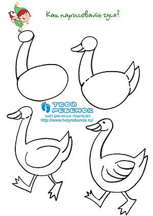 Как рисовать гуся