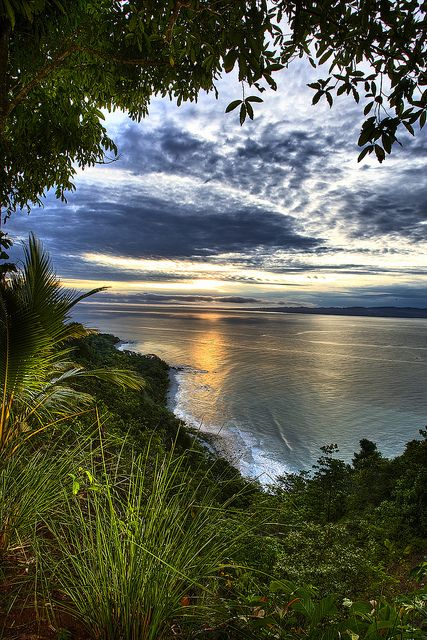 Osa peninsula Costa Rica. Check out Brigette's review of Andrew McCarthy's The Longest Way Home: One Man's Quest For The Courage To Settle Down here: http://chaptersandscenes.wordpress.com/2014/07/11/brigette-reviews-the-longest-way-home/