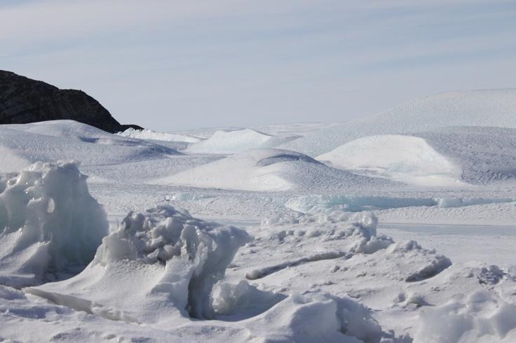 I visited Antarctica Dec 2011, fantastic.