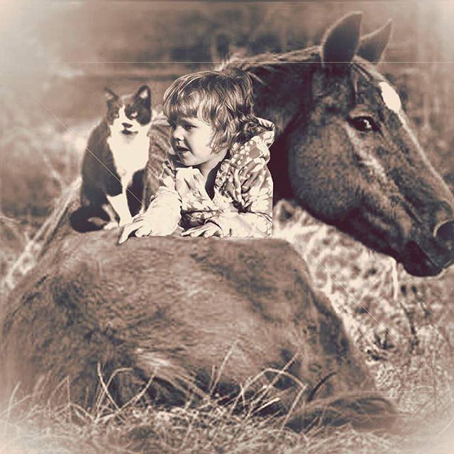 Never lose your imagination and all the possibilities #creativephotography #portraitfun #portrait #friends #imagination #horse #cat #photoshop #creativephoto #bramptonphotographer #JLee_Portraiture