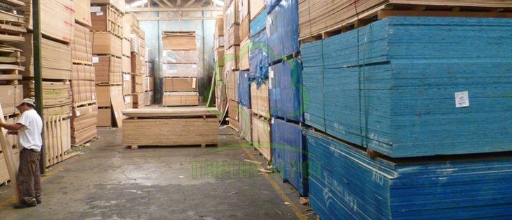 En Triplay Depot, ofrecemos una amplia gama de maderas de calidad para la industria de la construcción. Encuentre los precios de madera para la cimbra aparente, el concreto expuesto y el panel estructural en nuestro sitio. Llámenos hoy mismo - (55) 47 47 32 52!