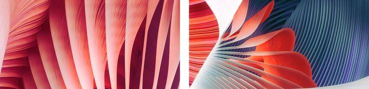 Plumes Wallpapers   Abduzeedo Design Inspiration