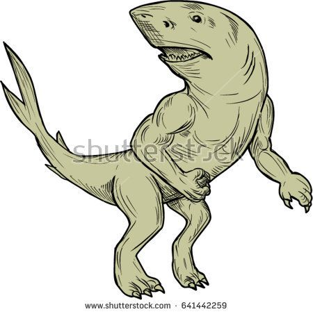 Drawing sketch style illustration of a Nanaue, a mythical creature in Hawaiian Folklore of a humanoid shark with arms and legs looking to the side viewed from front set on isolated white background.   #nanaue #drawing #illustration