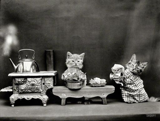 """1914 """"Kittens in costume preparing to make tea with kettle boiling on toy stove""""; photo by Harry W. Frees"""