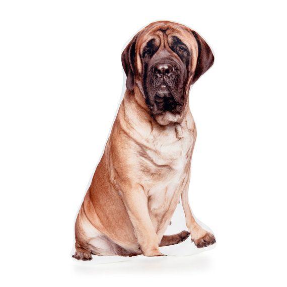 English Mastiff Dog Pillows - By Cushion Co WORLDWIDE SHIPPING