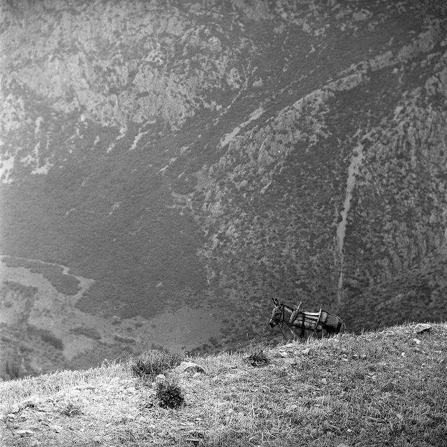 Nick Dewolf Μάιος 1959 Μετέωρα Καλαμπάκα Καστράκι.