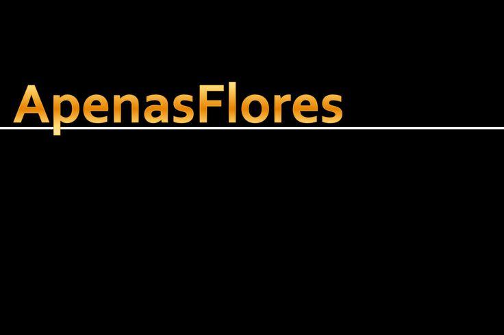 ApenasFlores  cores e flores, nada mais! Prometo