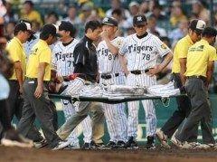 阪神甲子園球場で行なわれた阪神対巨人の試合中に西岡選手が負傷しました 点を追う回左翼線へ同点タイムリーの際西岡選手は一塁手前で転倒しそのまま担架で運び出せれました 左足アキレス腱断裂と診断されたそうです 調子が上がって来ているだけにこのアクシデントは痛い(><) tags[兵庫県]
