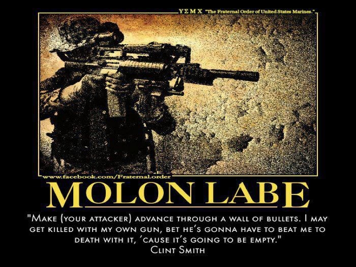 """Molon Labe """"Make (your attacker) advance through a wall of bullets. I may get killed with my own gun, but he's gonna have to beat me to death with it, 'cause it's going to be empty."""" ClintSmith #SecondAmendment"""