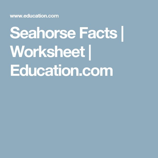 Seahorse Facts | Worksheet | Education.com