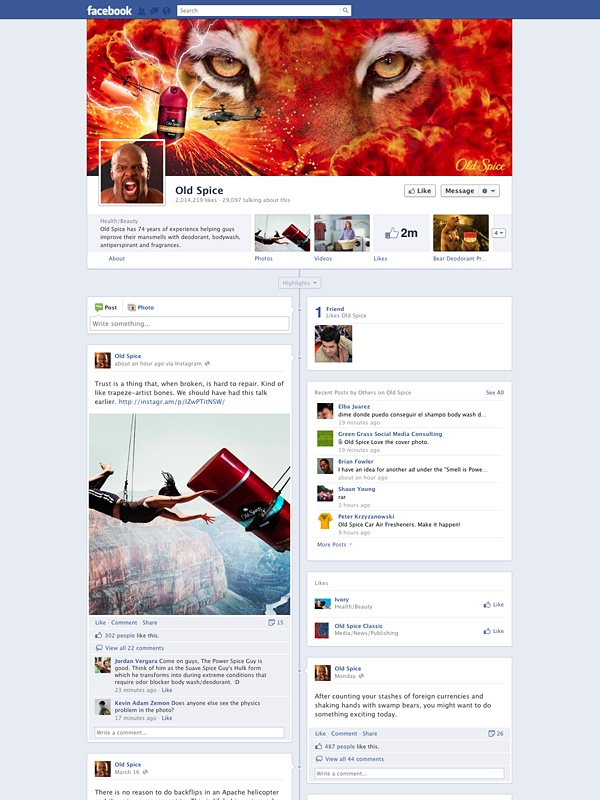 Amazing Facebook Timeline Brand Pages