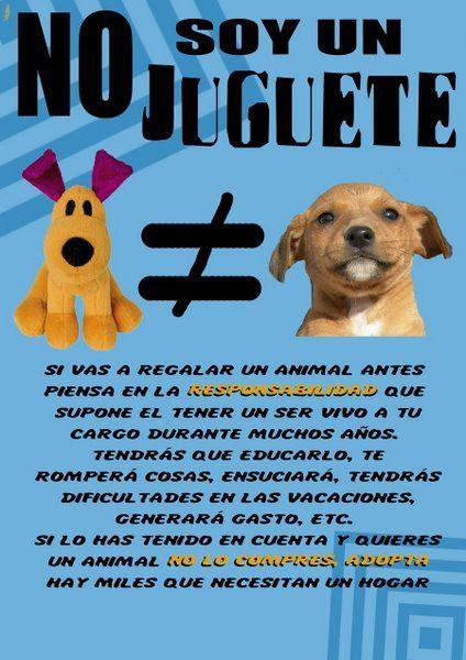TIENDAS DE CACHORROS: UN NEGOCIO INMORAL SI VENDEN ANIMALES O JAULAS