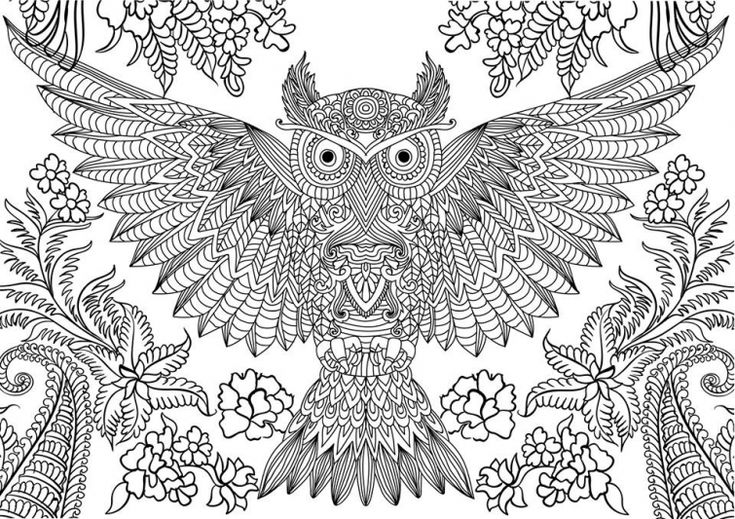 Advanced Owl difficult coloring page free printable Owl