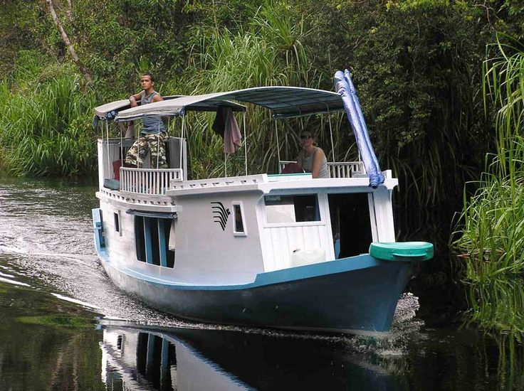 Klotok or Houseboat trip to Camp leaky. This trip is the highlight of most visitor's trip to Borneo. #borneoholidays
