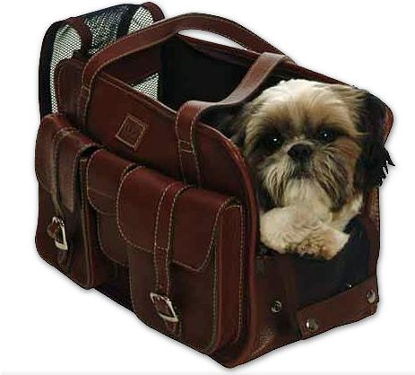 197 Best Images About Pet Carry On Bag On Pinterest Dog