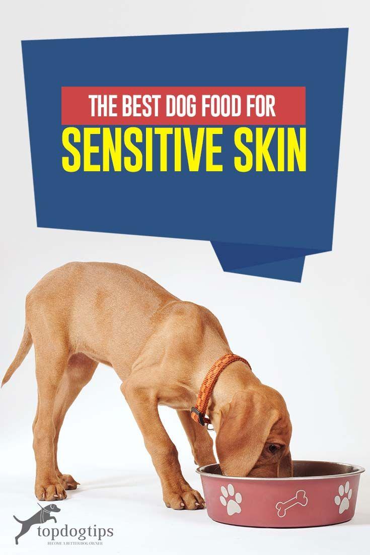 The Best Dog Foods For Sensitive Skin Best Dog Food Dog Food Recipes Best Dog Food Brands