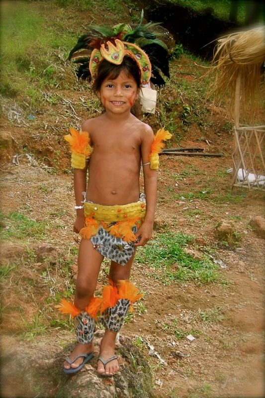 186 best images about rain forest Amazonas on Pinterest
