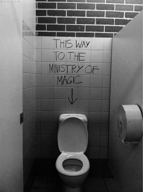 .: Magic, Public Bathroom, Harry Potter Funny, Graffiti, Toilets Seats, Bathroom Wall, Ministry, Harry Potter Humor