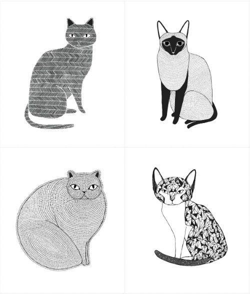 "Catnip - Cat Portrait - White - 36"" Panel"