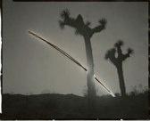 "Chris McCaw, Sunburned GSP#164(Mojave), 2007. 8""x10"" unique gelatin silver paper negative private collection"