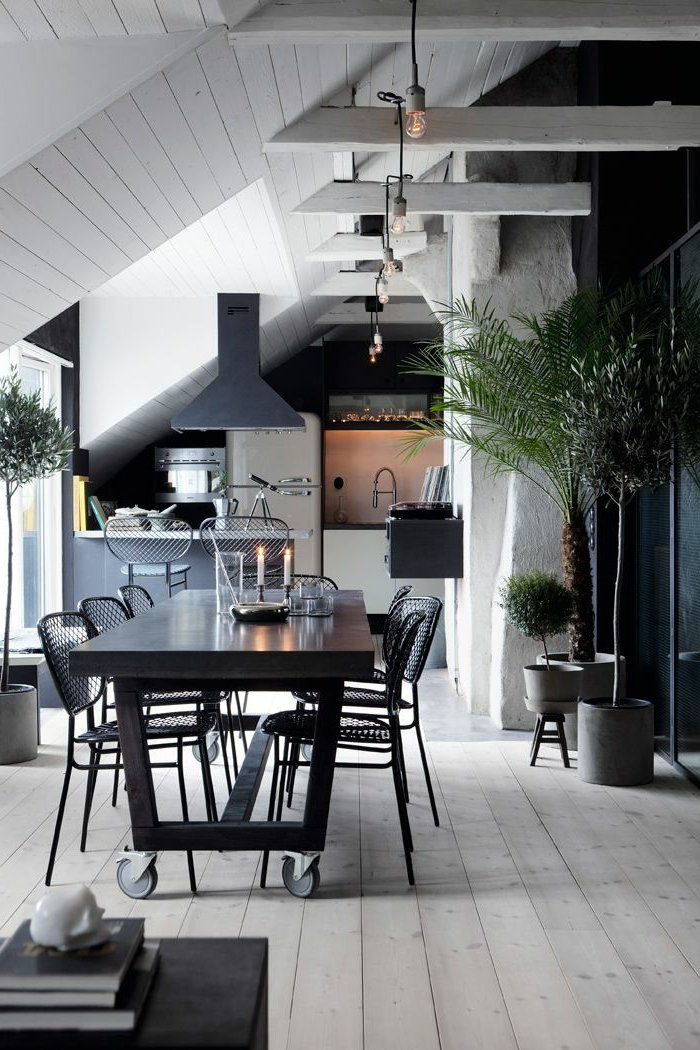 Kitchen Pitched Ceiling Skylight Architecture and Decor